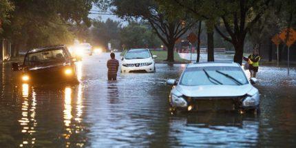 Hurricane-Harvey-Cars-Flooded-Street-Trees