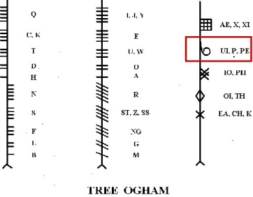 tree ogham alphabet with phagos
