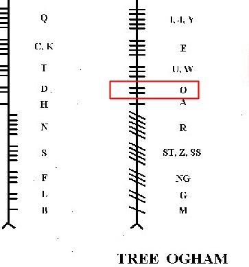 Gorse Ogham Onn