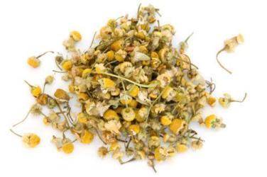 chamomile dried