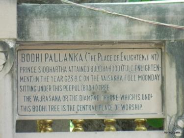 Bodhi_Tree_Marking_-_panoramio credit Neil Satyam